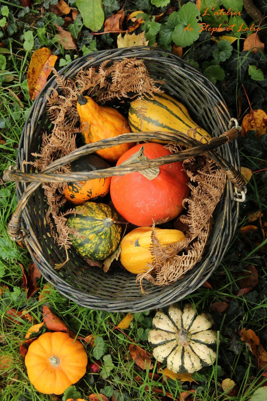 legumes halloween1